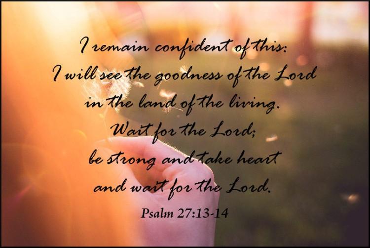 dandelion psalm 27